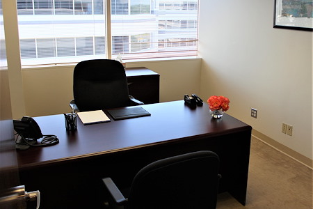 Source Office Suites Tysons Corner - Private, Window Office Available NOW!