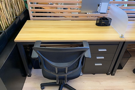 element18 - Dedicated Desk 1