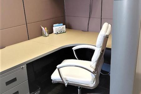 Riverside Central Business Center - Dedicated Desk