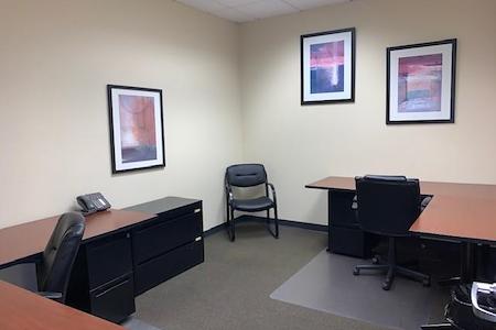 Plaza Executive Suites - Suite 250