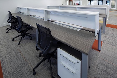 Group Office Space 24 - Shared Space