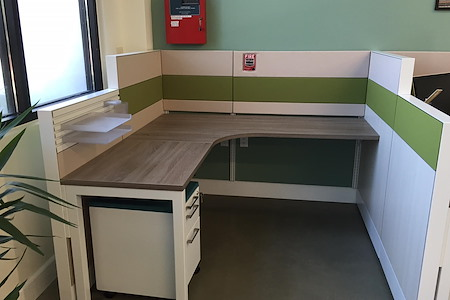 Alfi Trade Inc. - Well-lit open work space (desk 5)