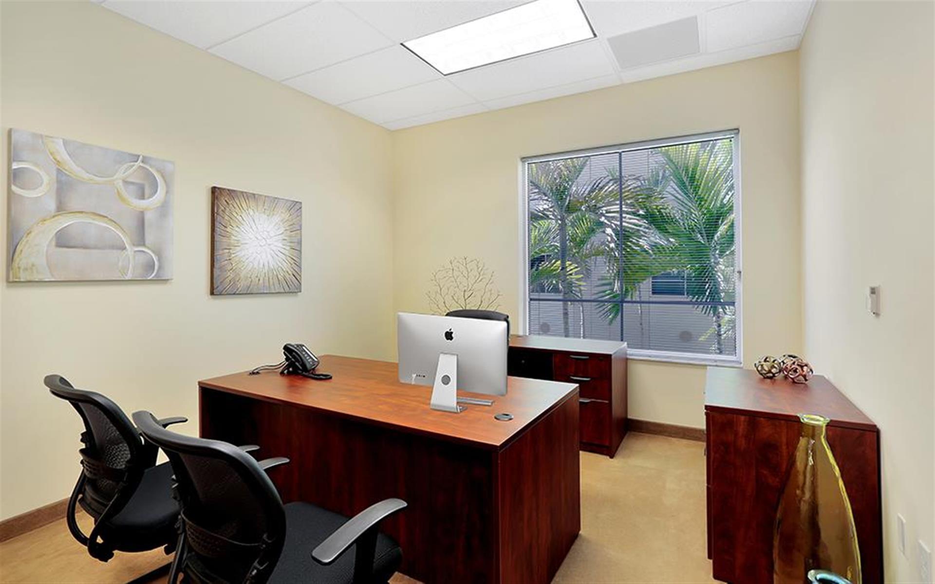 Premier Executive Center- Naples - Executive Day Office #231- seats 3