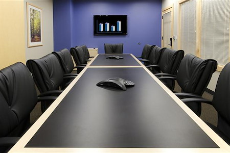 Intelligent Office of San Diego - Large Conference Room