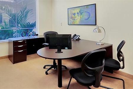 Premier Executive Center- Naples - Executive Day Office #351