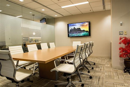 Source Office Suites Tysons Corner - Ingleside Conference Room